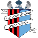 AFC Uckfield Town Badge